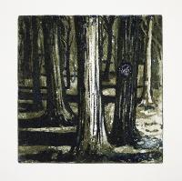 Trær i skogen / Trees in the Forest